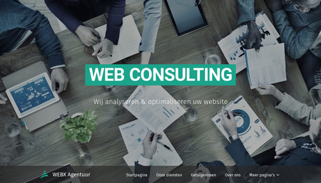 Web Consulting sjabloon