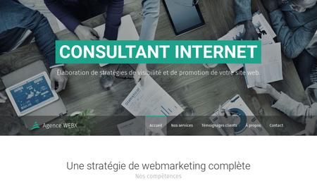 Template Consultant internet