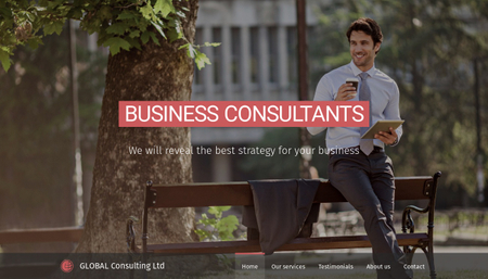 Business Consultants Template