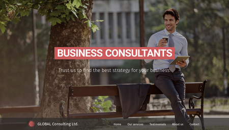 Business Consultant Template