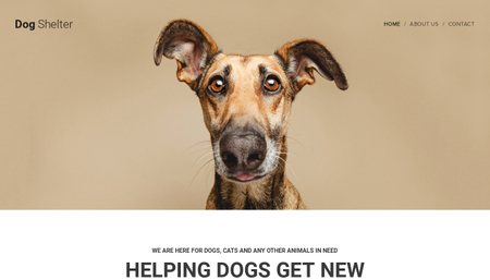 Dog Shelter Template