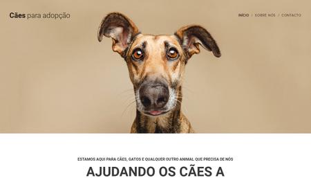 Template Cães para adopção
