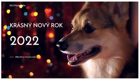 Šablona: Novoroční přání s videem