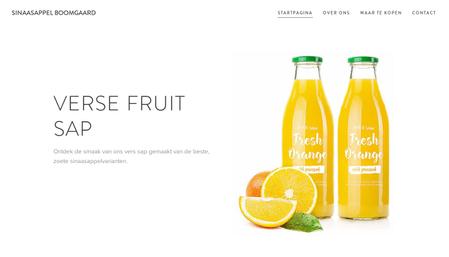 Sinaasappel Boomgaard Sjabloon